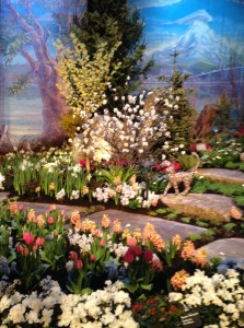 Flower Show Exhibit
